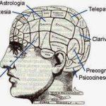 cerebro MANTICO